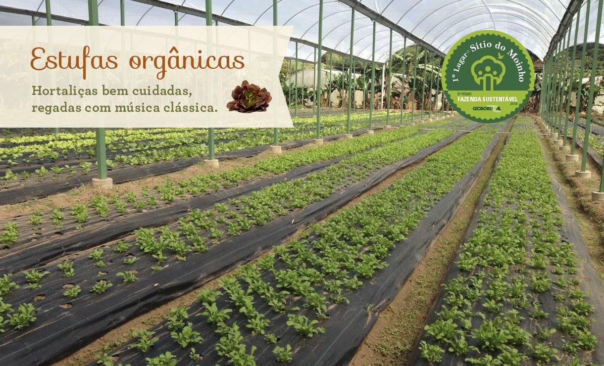 Estufas Orgânicas do Sítio do Moinho